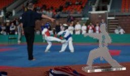 Karate: Memorijalni turnir Bljesak – Kutinčani dostojno obilježili borbenu akciju