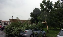 Nevrijeme u Kutini – poplavljeni podrumi, porušena stabla