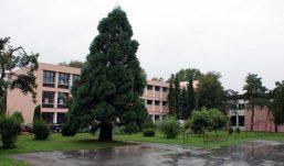 Nova školska godina – novo ruho OŠ Vladimira Vidrića i Područne škole u Jamaricama