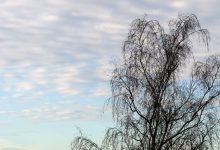 Danas i sutra djelomice sunčano – Temperature do 4°C